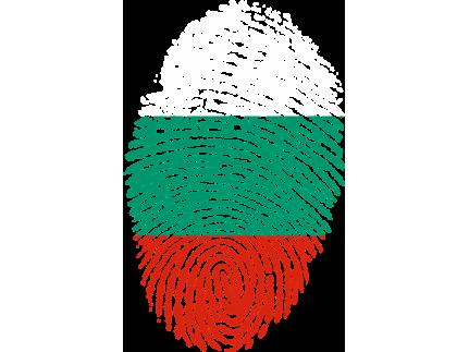 Издават европейски паспорт за огнестрелно оръжие и за българи